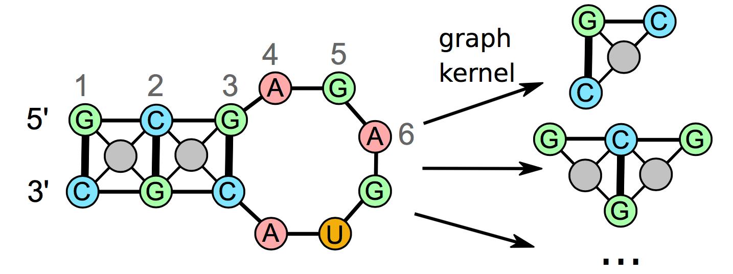 graph_kernel